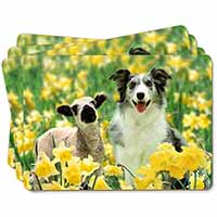 Border Collie Dog and Lamb Picture Placemats in Gift Box