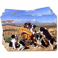 Border Collie in Wheelbarrow Picture Placemats in Gift Box