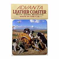 Border Collie in Wheelbarrow Single Leather Photo Coaster Perfect Gift