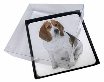 4x Beagle Dog Picture Table Coasters Set in Gift Box