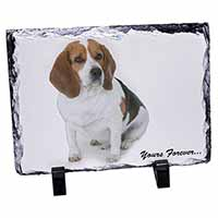 "Beagle Dog ""Yours Forever..."" Photo Slate Photo Ornament Gift"