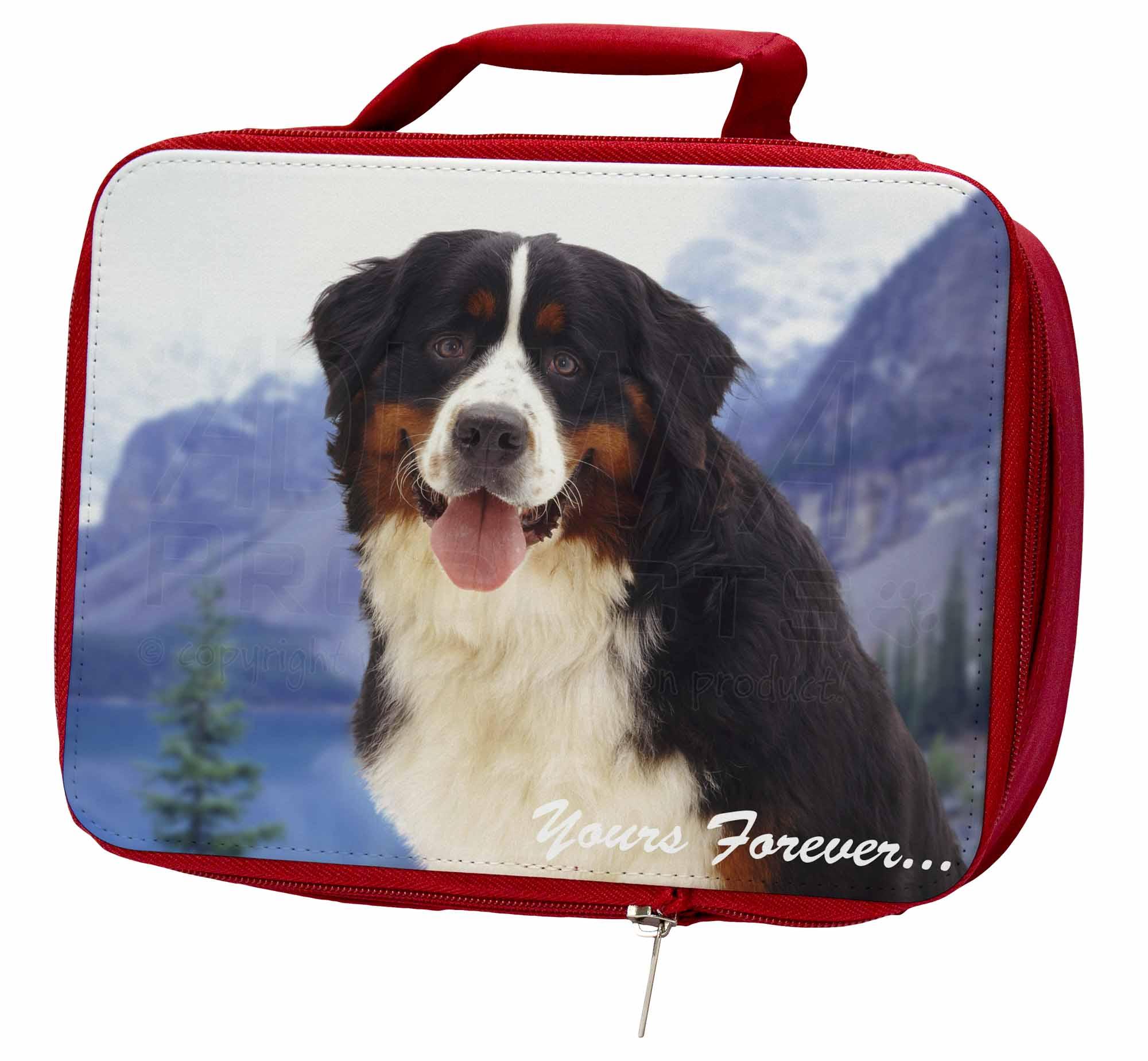 Bernese Mountain Dog Insulated Red School Bag, Lunch Box/Picnic Bag, School AD-BER6yLBR a661b7