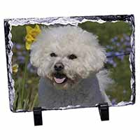Bichon Frise Dog Photo Slate Photo Ornament Gift