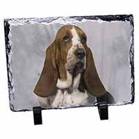 Basset Hound Dog Photo Slate Christmas Gift Idea