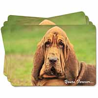 "Blood Hound Dog ""Yours Forever..."" Picture Placemats in Gift Box"