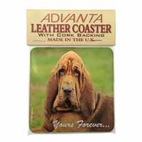 "Blood Hound Dog ""Yours Forever..."" Single Leather Photo Coaster Perfect Gift"