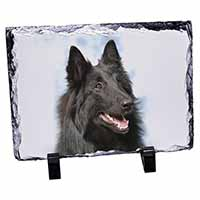 Black Belgian Shepherd Dog Photo Slate Photo Ornament Gift