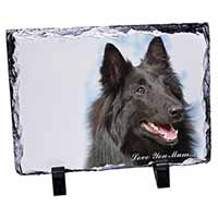 Black Belgian Shepherd