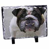 Bulldog Photo Slate Christmas Gift Idea
