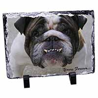"Bulldog ""Yours Forever..."" Photo Slate Christmas Gift Idea"