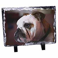 Bulldog Dog Photo Slate Photo Ornament Gift