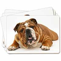 Beautiful Tan Bulldog Picture Placemats in Gift Box