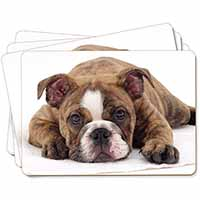 Bulldog Picture Placemats in Gift Box