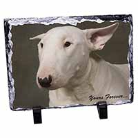 "Bull Terrier Dog ""Yours Forever"" Photo Slate Photo Ornament Gift"