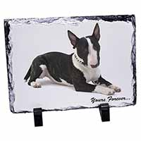 "Brindle and White Bull Terrier ""Yours Forever..."" Photo Slate Photo Ornament Gif"