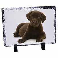 Chesapeake Bay Retriever Dog Photo Slate Photo Ornament Gift