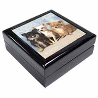 Chihuahua Keepsake/Jewellery Box Christmas Gift