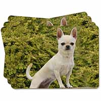 White Chihuahua Dog Picture Placemats in Gift Box