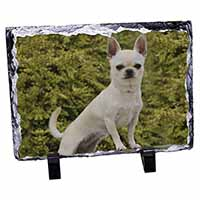 White Chihuahua Dog Photo Slate Christmas Gift Idea