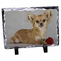 Chihuahua with Red Rose Photo Slate Photo Ornament Gift