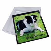 "4x Border Collie Dog ""Yours Forever..."" Picture Table Coasters Set in Gift Box"