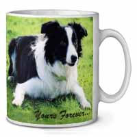 "Border Collie Dog ""Yours Forever..."" Coffee/Tea Mug Gift Idea"