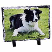 "Border Collie Dog ""Yours Forever..."" Photo Slate Photo Ornament Gift"