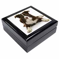 Liver and White Border Collie Keepsake/Jewel Box Birthday Gift Idea
