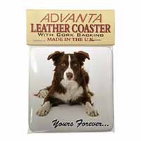 "Liver and White Border Collie ""Yours Forever..."" Single Leather Photo Coaster Pe"