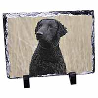 Curly Coat Retriever Dog Photo Slate Photo Ornament Gift