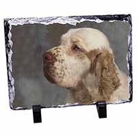 Clumber Spaniel Dog Photo Slate Photo Ornament Gift