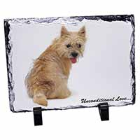 Cairn Terrier Dog With Love Photo Slate Christmas Gift Idea