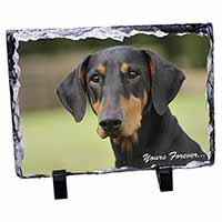 "Doberman Pinscher Dog ""Yours Forever..."" Photo Slate Photo Ornament Gift"