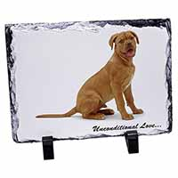 Dogue De Bordeaux-With Love Photo Slate Photo Ornament Gift