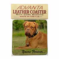 "Dogue De Bordeaux ""Yours Forever..."" Single Leather Photo Coaster Perfect Gift"