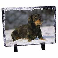 Long-Haired Dachshund Dog Photo Slate Photo Ornament Gift