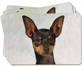 English Toy Terrier Dog Picture Placemats in Gift Box