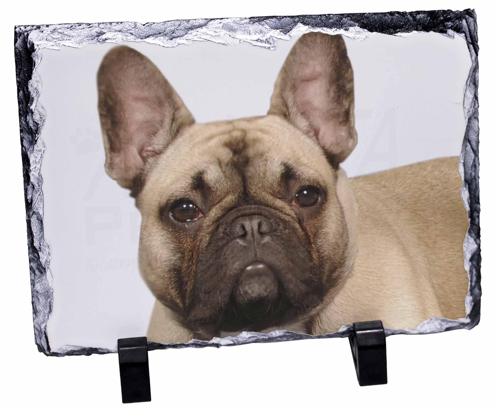 franz sische bulldogge foto schiefer weihnachtsgeschenk. Black Bedroom Furniture Sets. Home Design Ideas