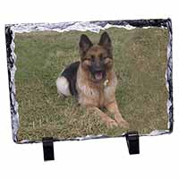 Alsatian/ German Shepherd Dog Photo Slate Photo Ornament Gift