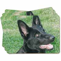 Black German Shepherd Dog Picture Placemats in Gift Box