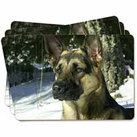 German Shepherd Dog in Snow Picture Placemats in Gift Box