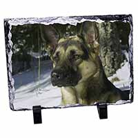 German Shepherd Dog in Snow Photo Slate Photo Ornament Gift