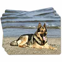 German Shepherd Dog on Beach Picture Placemats in Gift Box