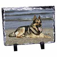 German Shepherd Dog on Beach Photo Slate Christmas Gift Idea