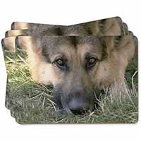 German Shepherd Picture Placemats in Gift Box