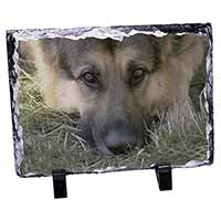 German Shepherd Photo Slate Photo Ornament Gift