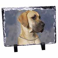 Fawn Great Dane Photo Slate Christmas Gift Idea