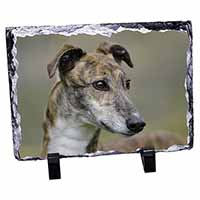 Greyhound Dog Photo Slate Christmas Gift Idea