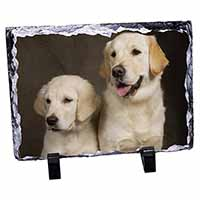Golden Retrievers Photo Slate Christmas Gift Idea