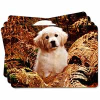 Golden Retriever Puppy Picture Placemats in Gift Box